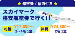 スカイマーク格安航空券で行く!